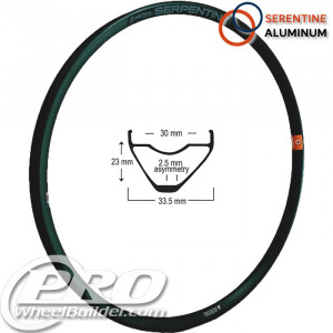 ASTRAL SERPENTINE ALUMINUM BLACK 29IN RIM