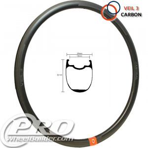 ASTRAL VEIL 3 CARBON DISC BLACK 700C RIM