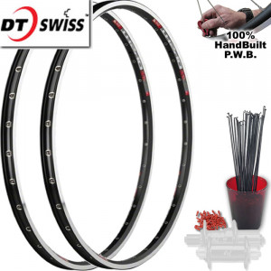 DT SWISS TOURING CLYDESDALE WHEEL SET PACKAGE