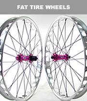 Fat Tire Wheels